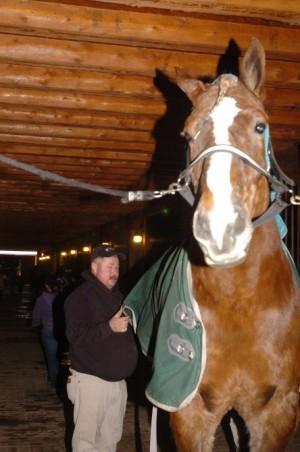 Big- jack - le-cheval_plus-grand-du-Monde_mesfavorisites