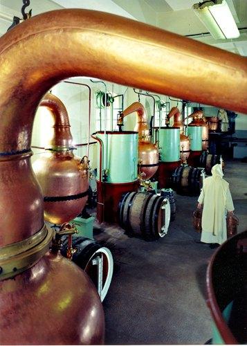 distilation de la chartreuse