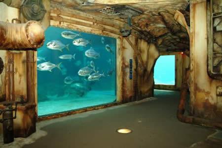 aquarium_mesfavorisites.com