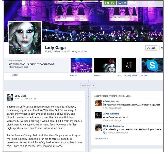 lady-gaga-poste-sur-facebook-i.dailymail.co.ukipix2013