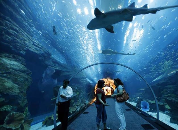 le plus grand aquarium du Monde-mesfavorisites.com