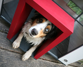 niche-de-luxe-pour chiens