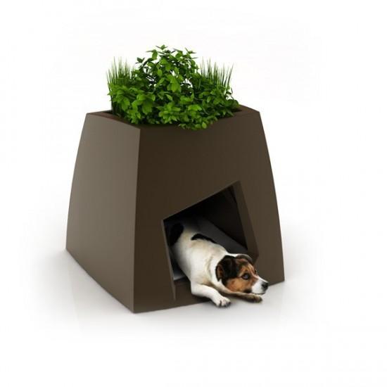 nouvelle-niche-creative-design-et-ecologique--chien-chat