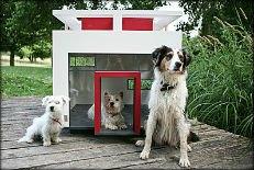 niche-design-pour -chiens