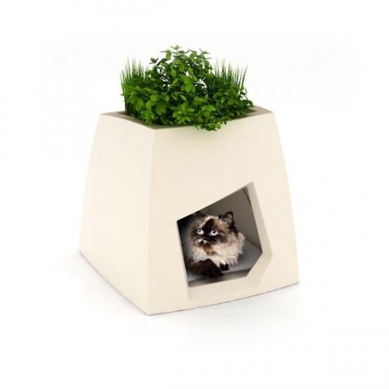 nouvelle-niche-creative-design-et-ecologique-chat-chien-.jpg
