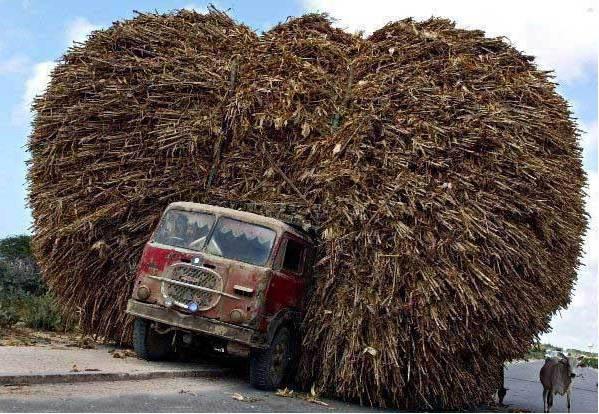Sur- des -routes- difficiles,- il -vaut -mieux_ faire -un- seul -chargement- à- la- russes