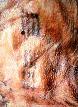 tatouage-otzi[1]