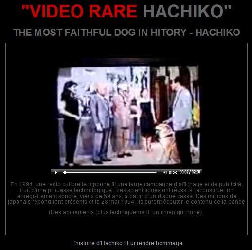 VIDEO- RARE- DE- HachikO