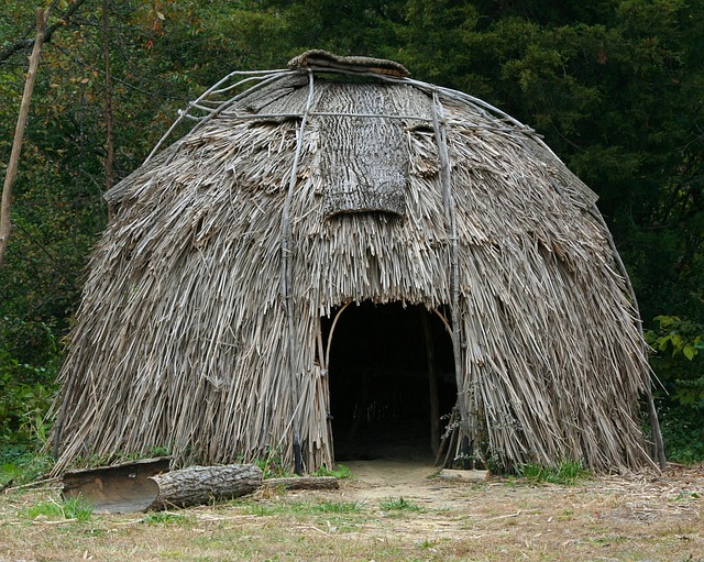 Virginie Village Historique Indien Maison corce Roseaux